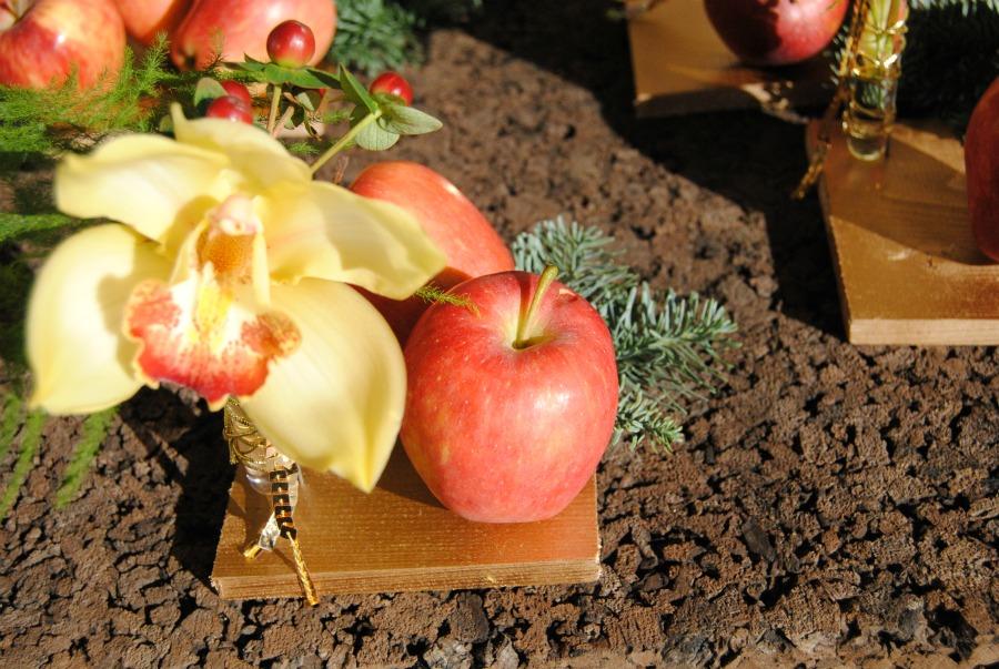 Centro de mesa orquideas y manzanas Mayula flores