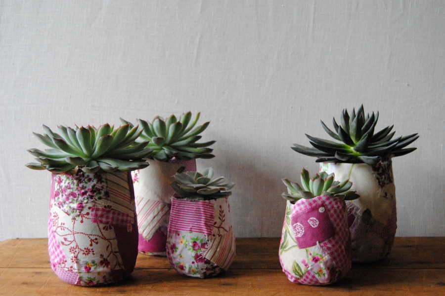 Jarrones artesanales con plantas crasas