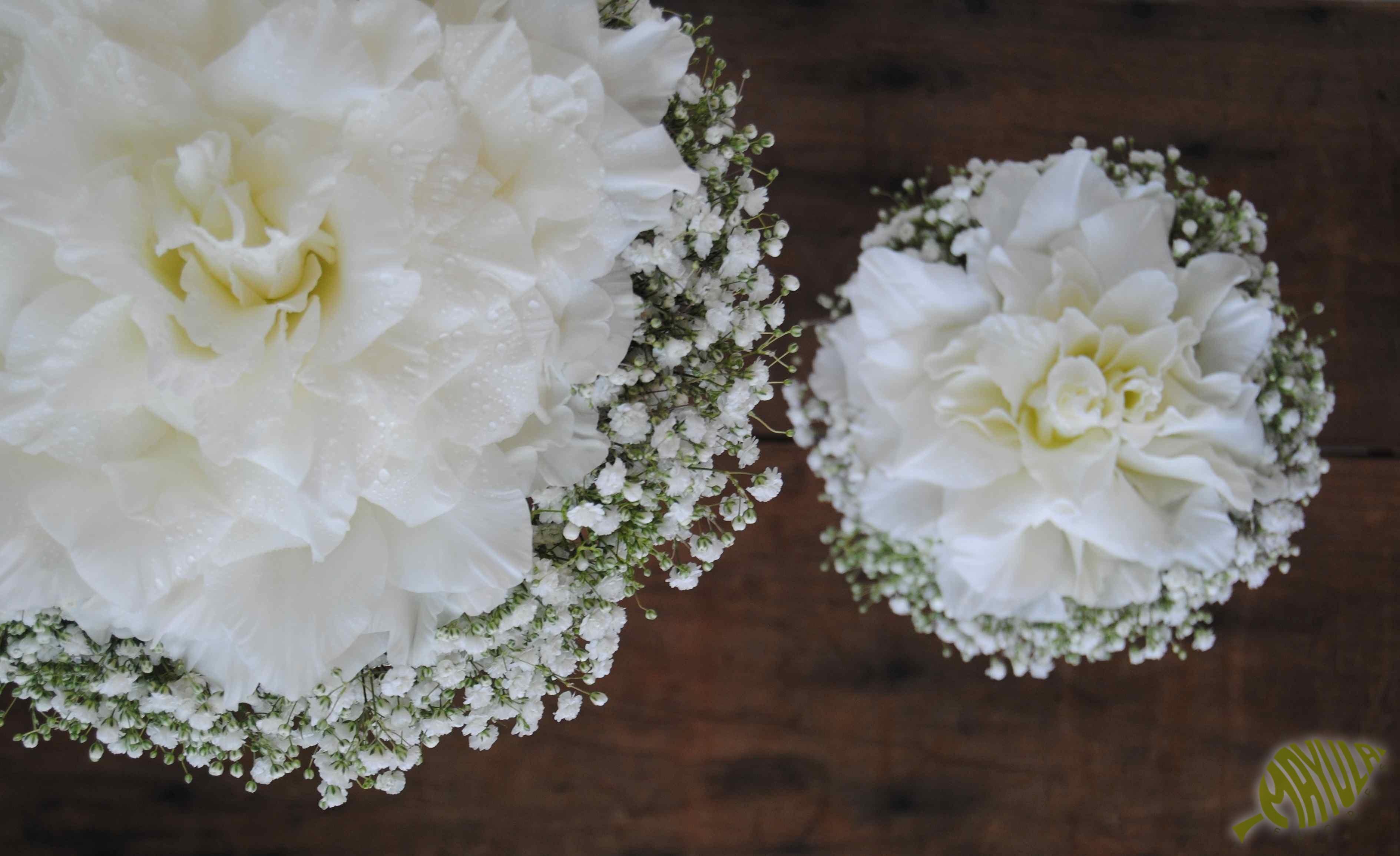 rosmelia-gladiolo-blanco
