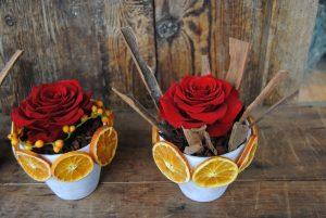 rosa eterna, preservada o liofilizada San Valentín