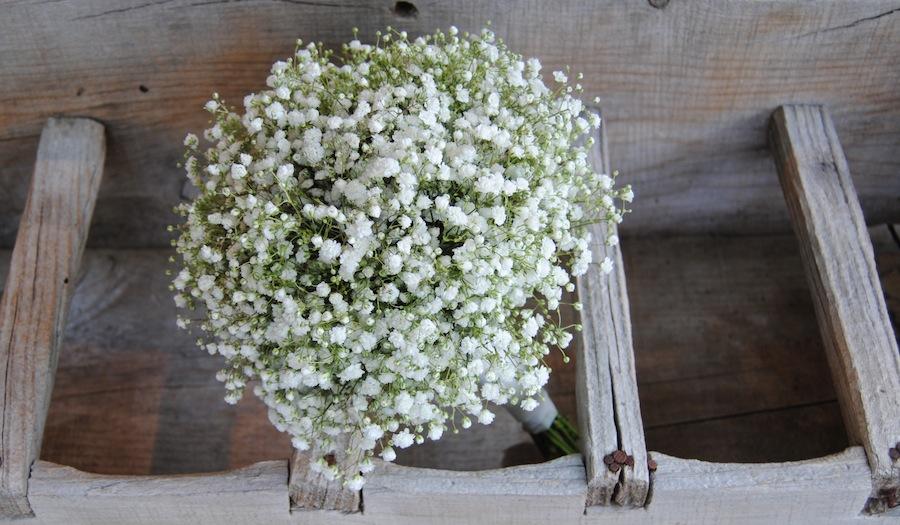 sencillo ramo de novia de paniculata